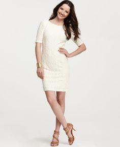 Petite V back dress