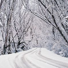 Really lovely winter photo - winter wonderland! would love to walk through this wonderland :) Iphone Wallpaper Images, Best Iphone Wallpapers, Wallpaper Pictures, Snow Images, Snow Pictures, Backyard Paradise, Photo Tree, Winter Wonderland, Free Images