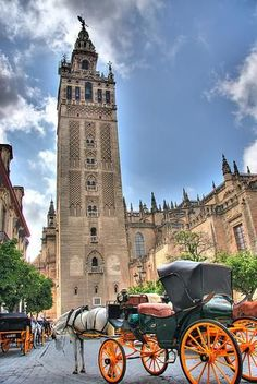 My favorite place I have ever travelled is Seville, Spain. My favorite attraction there is the Giralda Tower by the Catedral de Seville. Places Around The World, Travel Around The World, Around The Worlds, Great Places, Places To See, Beautiful Places, Simply Beautiful, Spain Images, Seville Spain