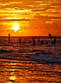 ✯ Ocracoke Outer Banks Sunrise - North Carolina