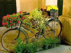 Reuse the old bicycle for FLower Expostition by vertuta,