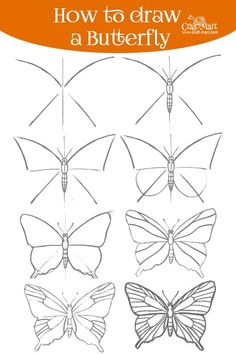 Learn how to draw a butterfly step by step using a few different methods. Make butterfly drawing fun and learn a few interesting facts in the process! Cool Art Drawings, Art Drawings Sketches, Illustration Art Drawing, Easy Drawings, Dress Sketches, Drawing Drawing, Design Illustrations, Doodle Drawings, Drawing Ideas