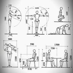 La Antropometría se define comoel estudio de las medidas del cuerpo humano.