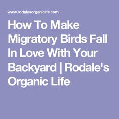 How To Make Migratory Birds Fall In Love With Your Backyard | Rodale's Organic Life