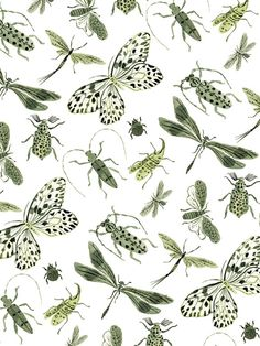 Green insects pattern, surface pattern design