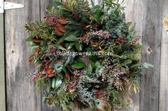 Bohemian Dreath Fresh Full Wreath Southern Magnolia Bohemian Holiday  Holiday Door Decor