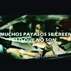 Muchos payasos se creen lo que no son.... #Payasos #PayasosFrases #FakePayaso Frases Do Twitter, Diva, Crushes, Sad, Memes, Google, Quotes, Movie Posters, Powerful Quotes