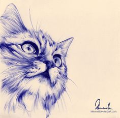 Feathers and Fur: Beautiful Drawings in BallPoint Pen Biro Art, Ballpoint Pen Art, Ballpoint Pen Drawing, Cat Drawing, Amazing Drawings, Beautiful Drawings, Pen Sketch, Art Sketches, Cat Pen