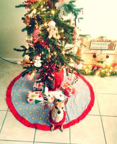 Chloe with our Christmas tree!