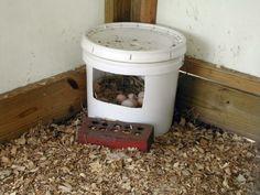 chicken nesting box | http://i291.photobucket.com/albums/ll284/Birdartist/bucketnest.jpg