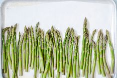 Spotlight On: Asparagus | Nourishing Lab