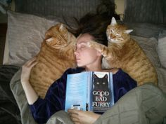 Two magician cats using mind control on their human, in an attempt to make her forget all the stuff she has read about cats in my third cat book.
