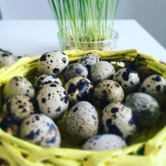 Basket & eggs