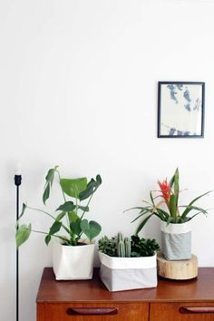 make your own fabric buckets for your house plants.