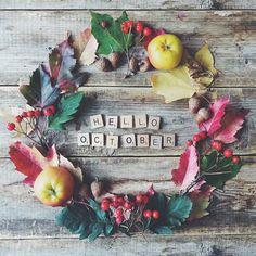 « Привет, Октябрь! Мой любимый @the_pled поделился списком вдохновляющих дел, с которыми приятно будет провести этот осенний месяц:) Ищите его на сайте http… »