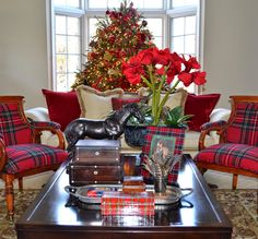 The Polohouse: Holiday Tartan & Tortoiseshell