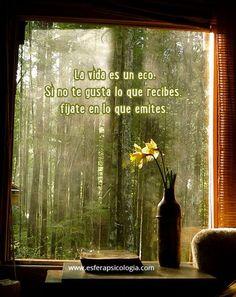 #imagen #reflexión #frase