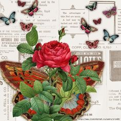 Butterflies and Roses Vintage Tags, Vintage Labels, Vintage Ephemera, Vintage Paper, Vintage Prints, Collages, Foto Transfer, Book Page Art, Rose Pictures