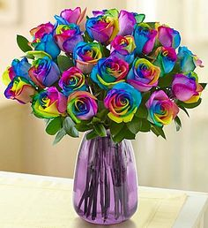 Kaleidoscope Roses, 12-24 Stems. These are kind of crazy cool. : )