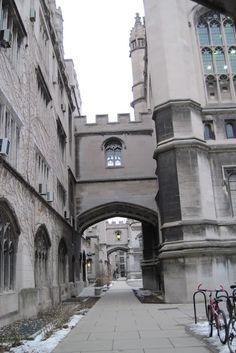 University of Chicago 1 | Thru My Eyes