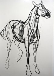 Blood Horse Study II