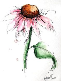 "Original artwork of lovely pink cone flower with a single leaf rendered in pen, ink and watercolor. It is titled ""Pink Cone Flower With Leaf"" and is signed and dated at the bottom with the title on the back. The warm pink color against the simple white background really makes the"
