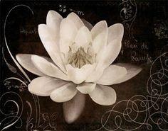 Imagens lindas de flores para artesanato https://www.aminhaesfera.com/2017/imagens-lindas-de-flores-para-artesanato.html