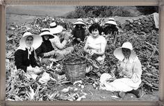 Lanzarote - San Bartolomé año 1950.... #fotoscanariasantigua #tenerifesenderos #fotosdelpasado #canariasantigua #canaryislands #islascanarias #blancoynegro #recuerdosdelpasado #fotosdelrecuerdo