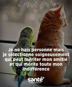 Life Quotes Pictures, Philosophy Quotes, French Quotes, True Feelings, Good Vibes Only, Some Words, Happy Thoughts, Words Quotes, Sentences