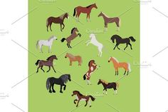 Illustration of Different Breeds of Horses. Pet Icons