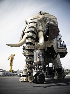 Giant Elephant: Weighing 40 tons and measuring 12 m high, this mechanical elephant, designed by François Delarozière, with hundreds of moving parts and pistons was largely made of reclaimed poplar together with steel and flapping leather ears, was operated by 22 manipulators and could carry 30 people. It was the star of the live theatre show, The Sultan's Elephant.