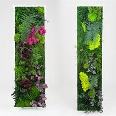 Une belle idée pour les amoureux des plantes qui ont peu de place : un tableau végétal avec de vraies plantes. L'idée est d'habiller votr...