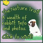 About the Nature Trail.com « About the Nature Trail Show Rabbit Information Site