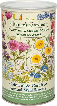 Best Wild Flower Mix