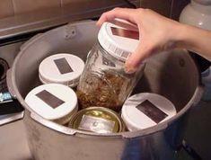 Sterilize grain spawn for mushrooms in a pressure cooker Edible Wild Mushrooms, Garden Mushrooms, Growing Mushrooms, Stuffed Mushrooms, Mushroom Spores, Mushroom Cultivation, Using A Pressure Cooker, Instant Pot Pressure Cooker, Culture Champignon