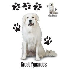 Great Pyrenees Dog HEAT PRESS TRANSFER for T Shirt Sweatshirt Tote Fabric 851a #AB