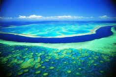 Great Barrier Reef ~ Australia, Papua New Guinea ~ our planet's largest coral reef system that can be seen from outer space! Beautiful Places In The World, Oh The Places You'll Go, Great Places, Places To Travel, Places To Visit, Beautiful Scenery, Great Barrier Reef, Dream Vacations, Vacation Spots