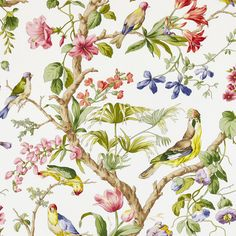 Belize Ivory by Scalamandre 193 Fabric Decor, Fabric Design, Wallpaper Roll, Room Wallpaper, Wallpaper Ideas, Fabric Online, Paper Background, Belize, Fabric Patterns