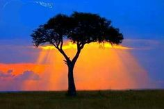 The sun shines in Africa