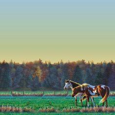 Horse Pasture - 12x12 Scrapbooking Paper