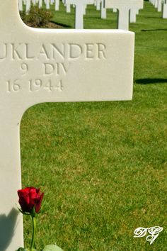 Taken at the American cemetery in Normandy France.