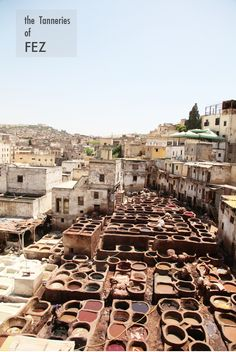 the tanneries of Fez (Morocco) - photography by Tyssia