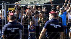 Campos atestados de vidas rotas que Europa prefiere no mirar