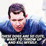 Craig - Doglover