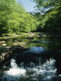 Waterfalls on the Eno River Passing Through a Hardwood Forest Photographic Print by Raymond Gehman at AllPosters.com
