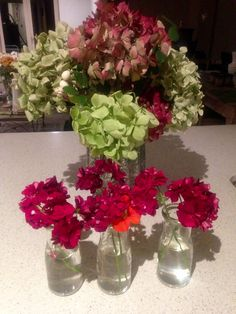 Hydrangeas, ivy geraniums and nasturtium.