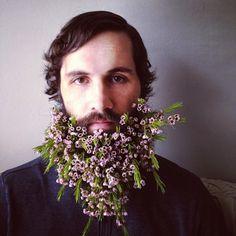 what a beautiful beard