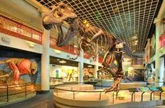 Philadelphia Attractions and Surrounding Areas with Kids: a KidsOutAndAbout review | Kids Out and About Rochester