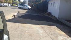 Tarmac, Driveway and Paving Repair