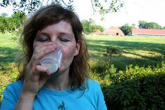 Rohmilch von der Milchtankstelle: Wir wissen wo es sie gibt!